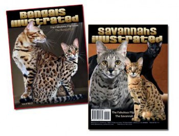 The Fabulous FLIP Issue – Bengals and Savannahs Combined
