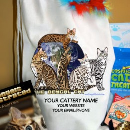 Bengal Kitten Going Home Bags – Customized