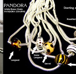 Pandora Charms and Necklaces