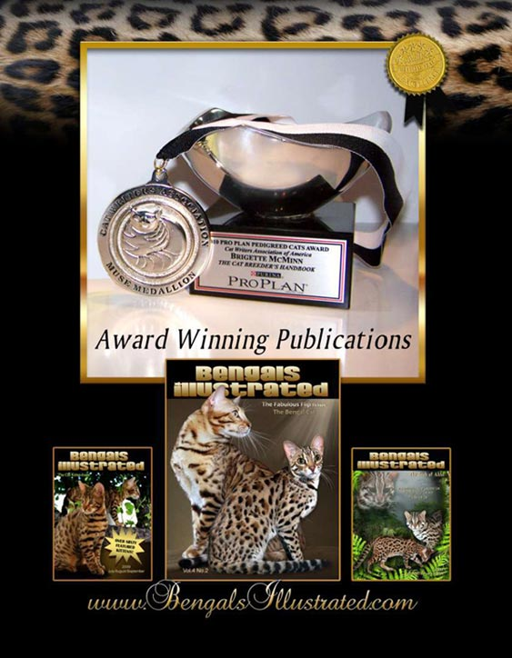 Bengals Illustrated has won numerous awards -- for excellence, content and graphic design!